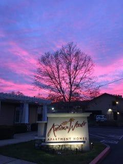 sunset sign